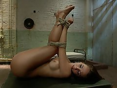 Anal, BDSM, Brunette, Fetish